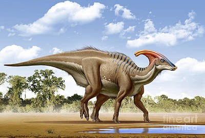 Parasaurolophus Digital Art - A Parasaurolophus Searches For A Source by Mohamad Haghani