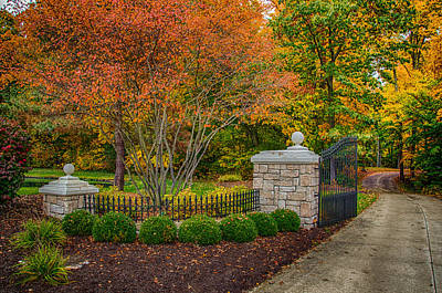 Photograph - A Path To Follow by Gene Sherrill