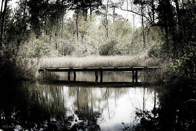 Photograph - A Peaceful Bayou by Shelly Stallings