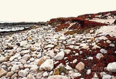 Impressionism Digital Art - A Pebble Beach by Linda  Parker