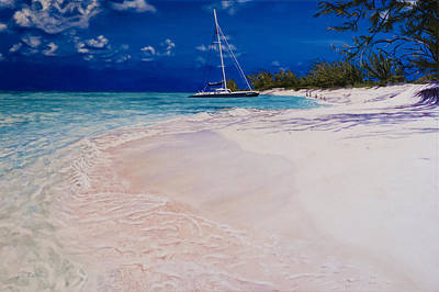 Painting - A Perfect Bay In Turks And Caicos by Liz Zahara