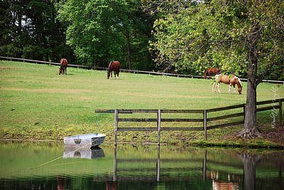 Photograph - A Perfect Day - Buckhorn Farm by Paulette B Wright