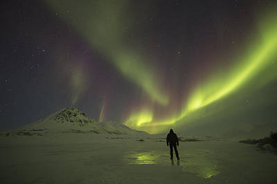A Person Stands On The Frozen Art Print by Robert Postma