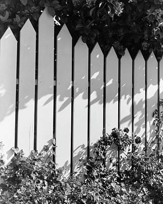 A Picket Fence Art Print