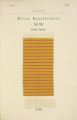 A Piece Of Silk With Red Stripes Art Print by British Library
