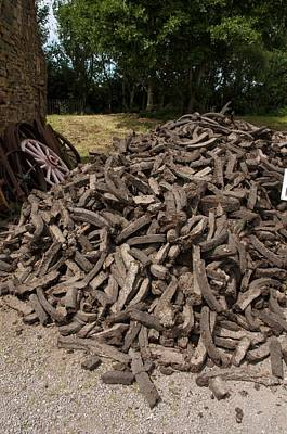 Bog Wall Art - Photograph - A Pile Of Peat by Sinclair Stammers