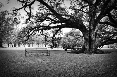 Black And White Photograph - A Place To Relax by Todd Hartzo