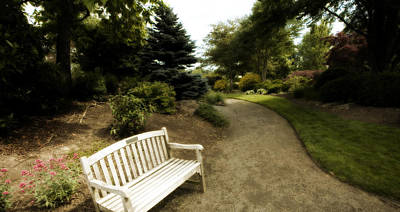 Park Benches Photograph - A Place To Rest by Bonnie Bruno