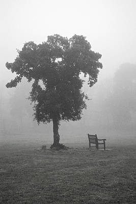 Photograph - A Place To Sit by Christopher Rees