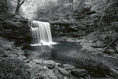 Photograph - A Place Where The Water Falls by Denise Bush