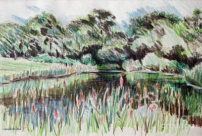 Drawing - A Pond At Watch Hill Ri by Joan Hartenstein