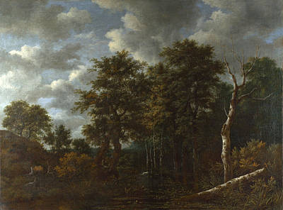 Painting - A Pool Surrounded By Trees by Jacob Isaacksz van Ruisdael