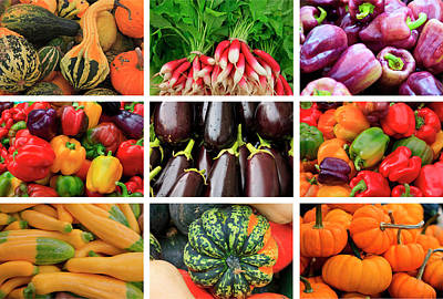 Zucchinis Photograph - A Poster Featuring Produce Grown by Mallorie Ostrowitz