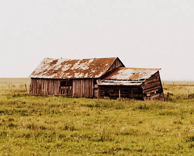 Photograph - A Prairie Past by Ramona Johnston