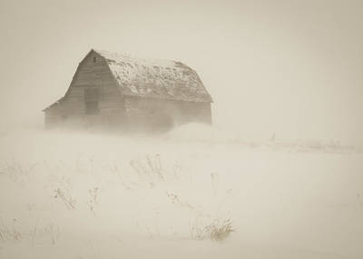 Photograph - A Prarie Winter by Gerald Murray Photography