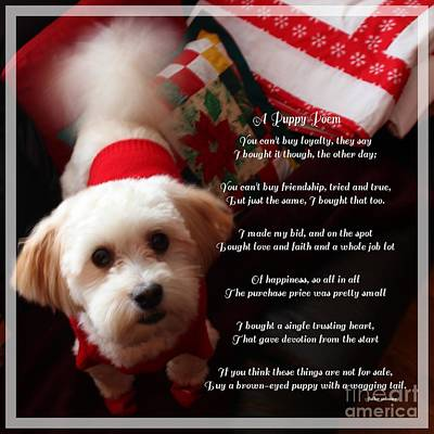 A Puppy Poem And A Puppy Dressed For Christmas Art Print by Barbara Griffin