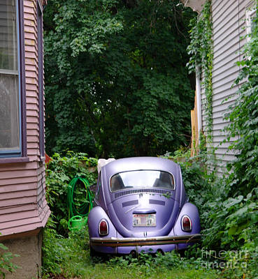 Purple Car Photograph - A Purple Car Grows In Madison by David Bearden