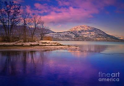Okanagan Valley Photograph - A Purple Surrender by Tara Turner