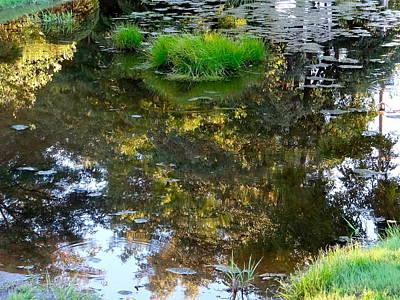 A Quiet Little Pond Art Print by Ira Shander