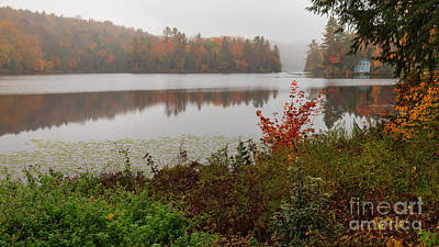 Pond Photograph - A Quiet Place On Curtis Pond by Charles Kozierok