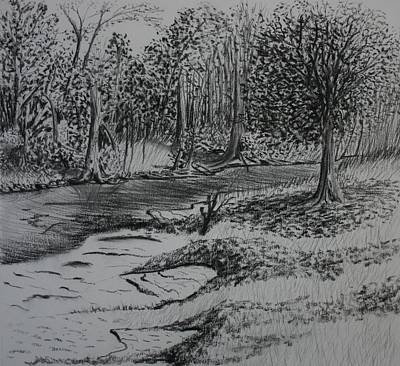 Drawing - A Quiet Stream by Stacy C Bottoms