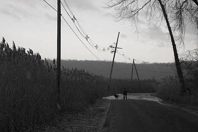 Photograph - A Quiet Walk by Robin Mahboeb