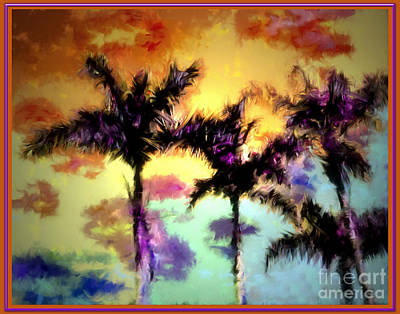 Photograph - A Rainbow Of Palms by Irma BACKELANT GALLERIES