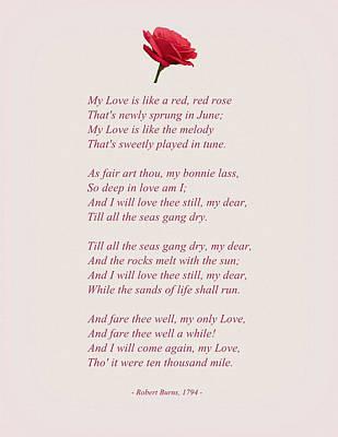A Red Rose Modern Version Art Print