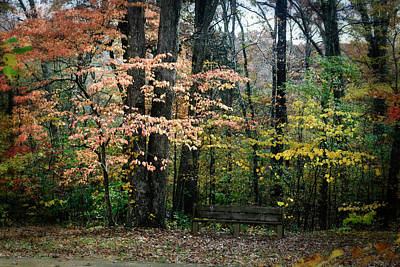 Photograph - A Resting Place by George Taylor