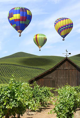 Hot Air Balloon Photograph - A Ride Through Napa Valley by Mike McGlothlen