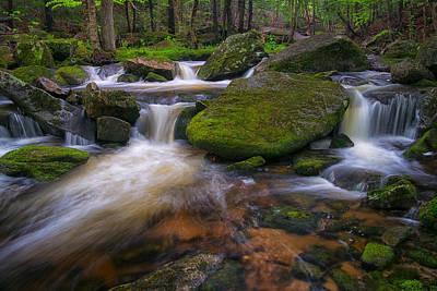 Photograph - A River Runs Through by Darylann Leonard Photography