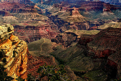 A River Runs Through It-the Grand Canyon Art Print by Tom Prendergast