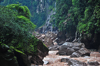 Photograph - A River Through The Peruvian Amazon by Liesl Marelli