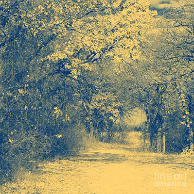 A Road Framed With Trees Art Print by Mickey Harkins