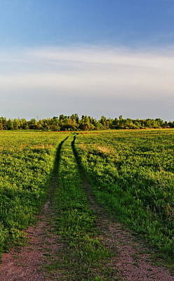 Photograph - A Road To Nowhere by Dale Kauzlaric