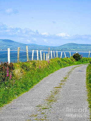 Photograph - A Road To Waterville by Suzanne Oesterling