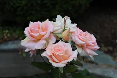 A Rose Bouquet Art Print by Patricia Hiltz