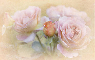 Photograph - A Rose By Any Other Name by Theresa Tahara