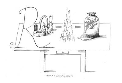 Abstract Forms Drawing - A Rose Is A Rose Is A Rose by Saul Steinberg