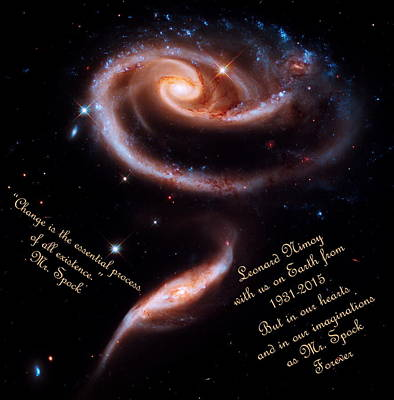 Fandom Photograph - A Rose Made Of Galaxies For Spock by Vicki Maheu