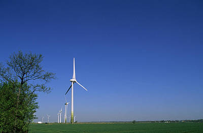 In A Row Photograph - A Row Of Windmills In A Field by Norbert Rosing