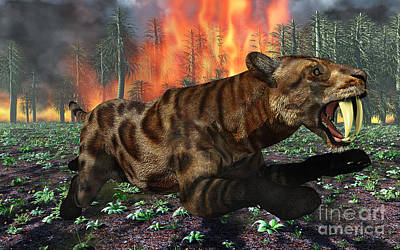 A Saber-toothed Tiger Running Away Art Print by Mark Stevenson