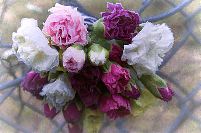 Photograph - A Sad Bouquet by Ron Roberts