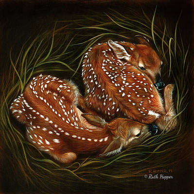 Whitetail Fawn Painting - A Safe Place  by Ruth Hopper