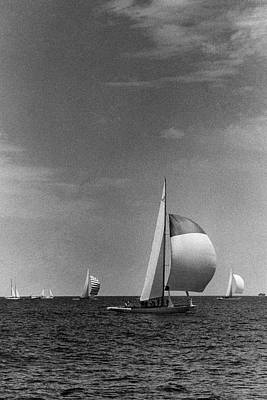 Photograph - A Sailboat Called Columbia by Toni Frissell
