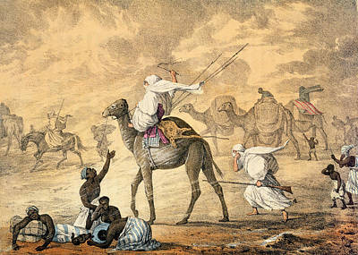 Camel Drawing - A Sand Wind On The Desert by Captain George Francis Lyon