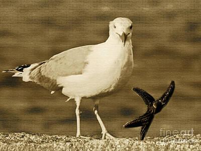 A Seagull Kind Of Day Art Print by Carol F Austin
