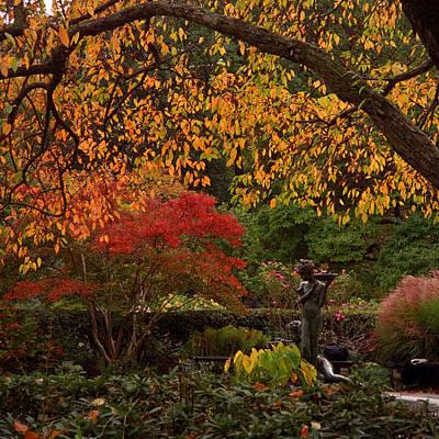 Photograph - A Secret Garden by Cornelis Verwaal