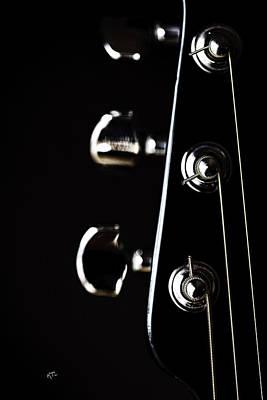 Photograph - A Sense Of Tune by Karol Livote
