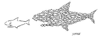 Reef Shark Drawing - A Shark Is Chased By A School Of Fish That by David Sipress